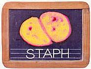 Staph